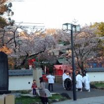 犬山祭り30