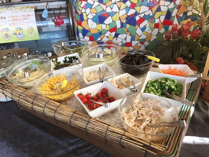 キャッツカフェ多治見店/ランチのサラダバー