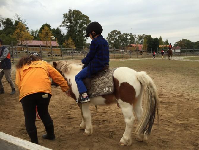 昭和村/ポニーに乗馬