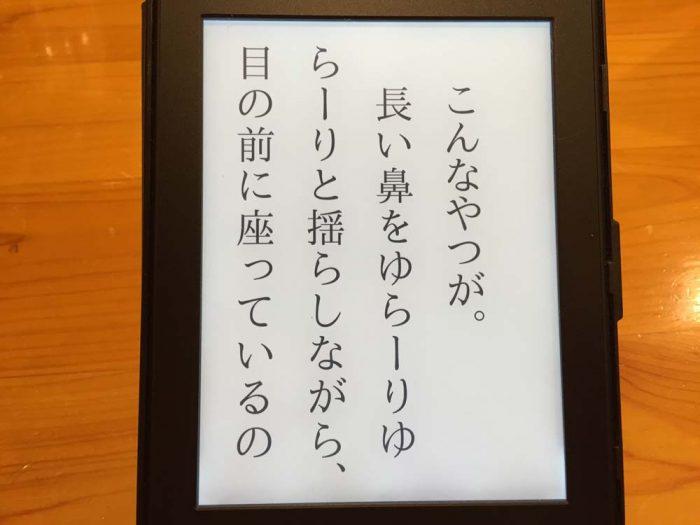 Kindle Paperwhite/フォントサイズ最大サイズ(8/8)