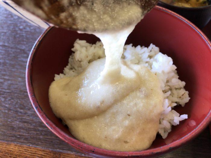 麦とろろ飯