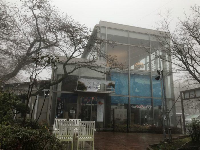 金魚水族館の水中楽園アクアリム