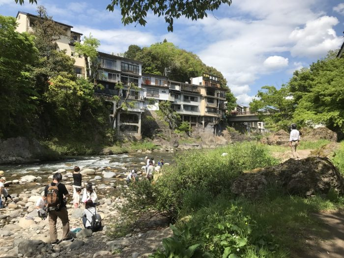 吉田川の川辺