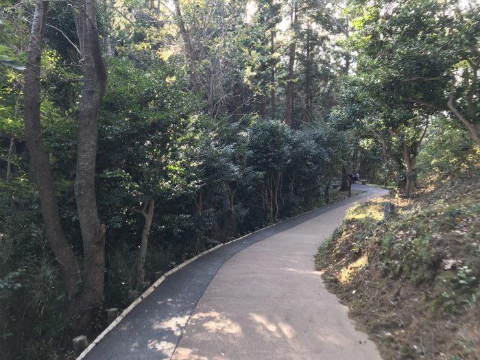 恋人岬遊歩道