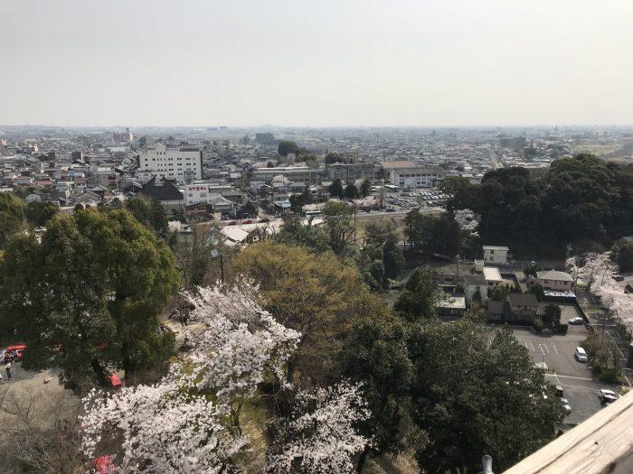 桜満開|犬山城天守からの眺め
