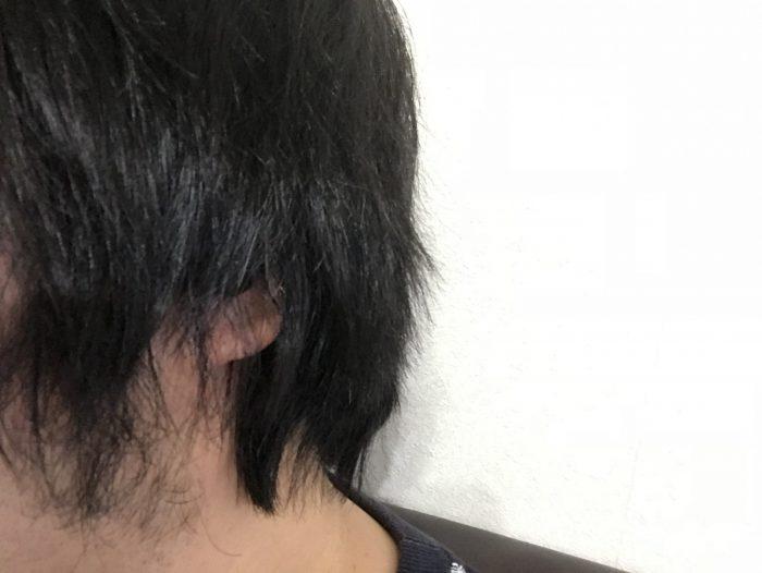 髪が耳を覆う長さだとイヤホンは見えない